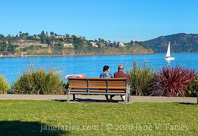 Marin Plein Air Group in Sausalito