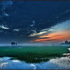 Sunrise over swamps