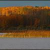 Fall morning at a lake