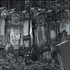 Silence of stones (Powazki Jewish Cemetery, Warsaw, Poland, 2008)