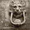 Old faithful (Fermo, Italy)