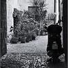 Cobblestone garden (Ascoli Piceno, Italy, 2009)
