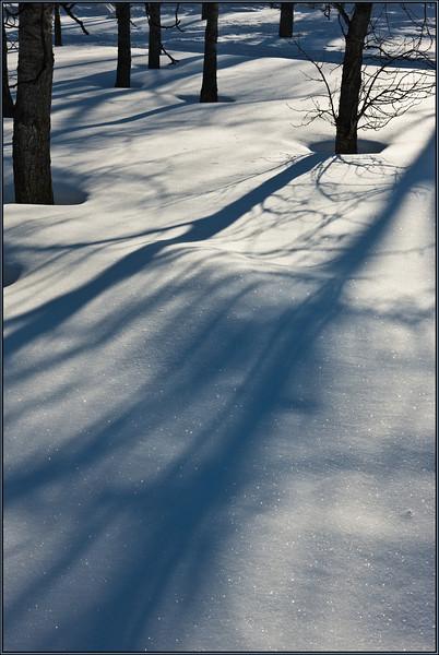 Broad strokes (Ukrainian Village, Alberta, Canada, 2009)