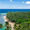 Forested peninsula (Kauai, 2010, photo by Alina Gortel)