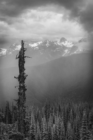 Revelstoke Mountain
