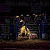 """The Bull Rider"" (photography) by Jason Levi"