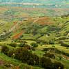 Aspromonte foothills