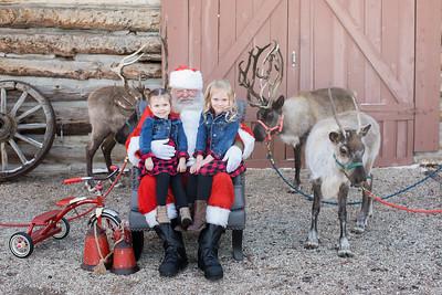 Reindeer-6