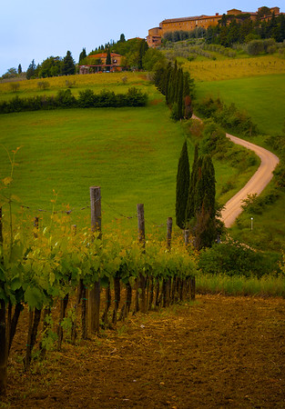 Along the white road from Pienza to Montichiello, Val d'Orcia, Tuscany, Italy 2018