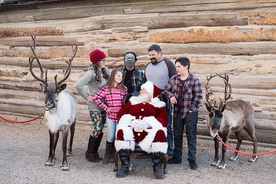 Reindeer-453