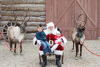 Reindeer-10