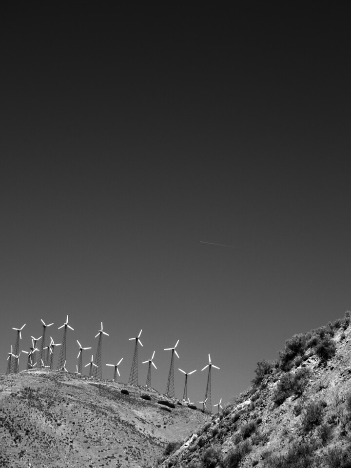 Windmills Portrait