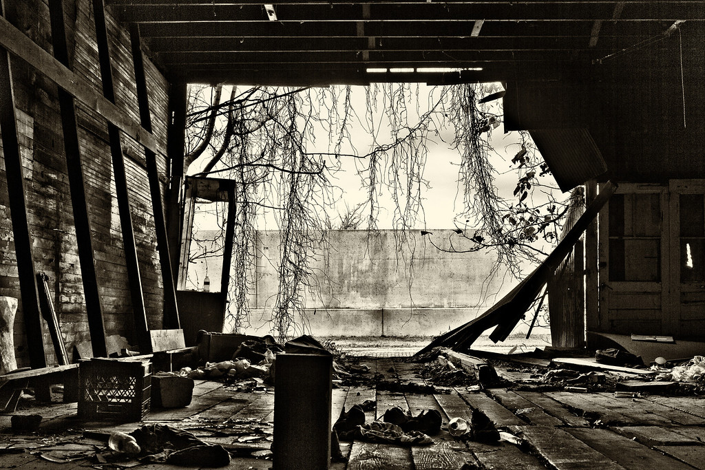 Escape From Decay
