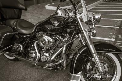 Black Harley