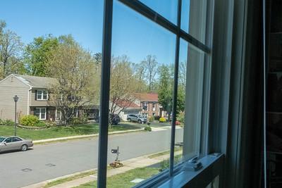 window-7347
