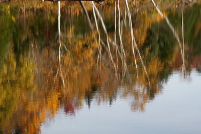 Maine  Oct 2014