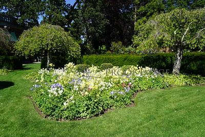 Charters Garden