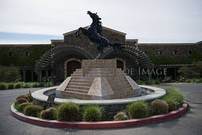 Black Stallion Winery