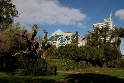 Capital Park - 40 acres of gardens.
