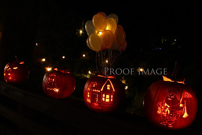 Can a pumpkin take flight?