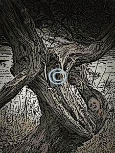* Dreaming - Image I took during a hike.  Mixed Media.