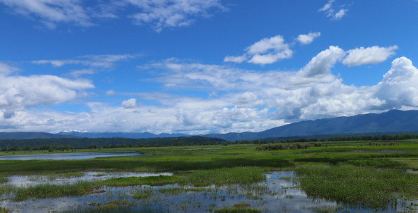 Kootenay Wildlife Refuge