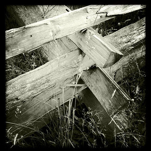 One of many types of split rail fence along the Blue Ridge Parkway.