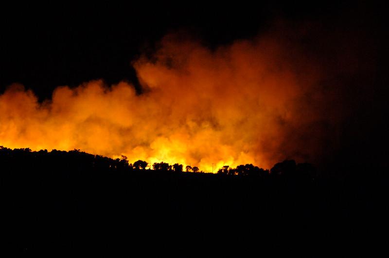 Nevada wildfires