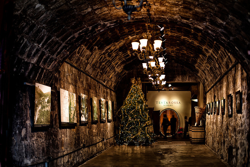 Testarossa winery entry