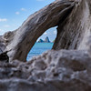 Looking through driftwood
