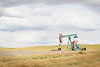 """Prairie Pump""<br /> Oil Pump, Alberta<br /> August 2015"