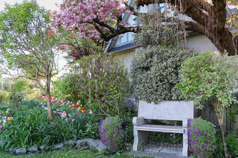 Beautiful spring gardens in Vancouver