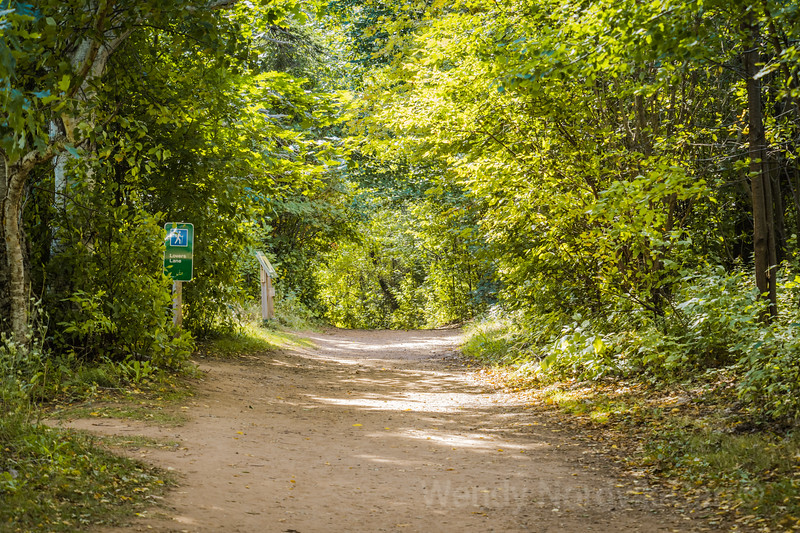 Walk down Lover's Lane at PEI Green Gables Heritage Place