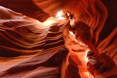 Antelope Canyon - Tree Block