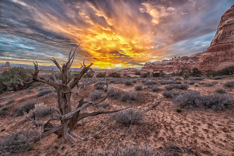 Canyonlands Fiery Sunset