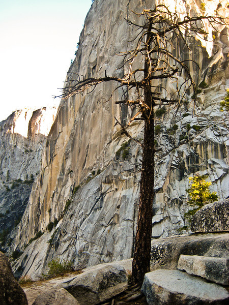 Granite Wall in Yosemite