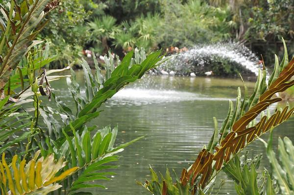 Brevard Zoo Aug 3 2008