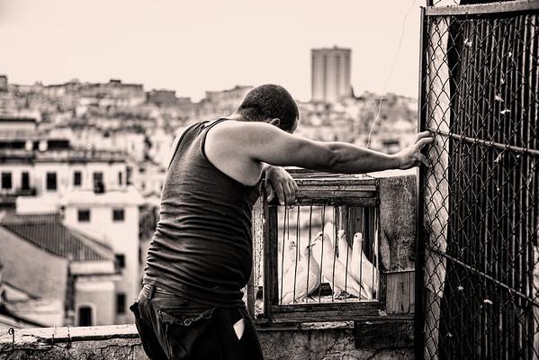 Havana, Cuba (pigeon tender)