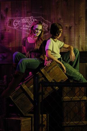 Ripley's Haunted House promo.