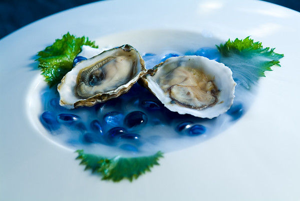 Oysters in dry ice