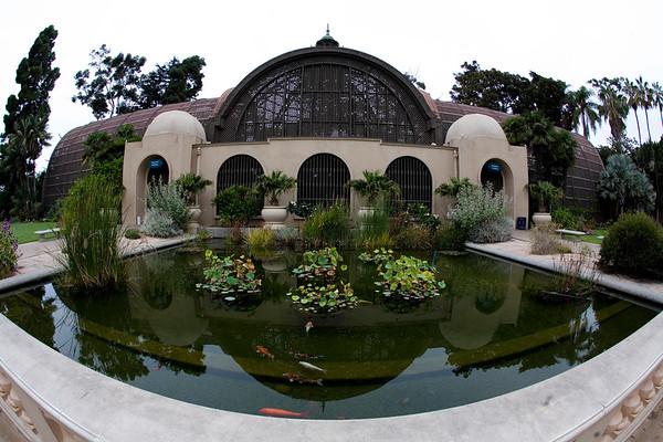 Balboa Park Arboretum