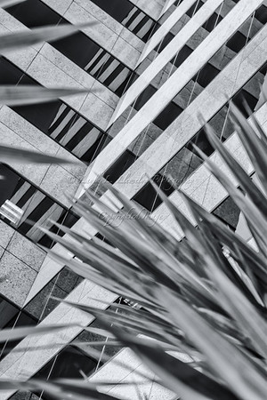 Geometric Perspectives (Day 91/366)