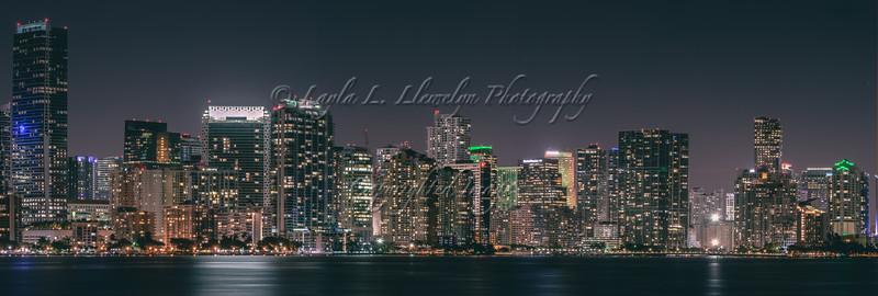 My Miami (Day 53/366   Week 8)