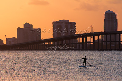 Paddle Boarding On The Bay (Day 117/366)