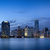 Day 247 Miami in Blue