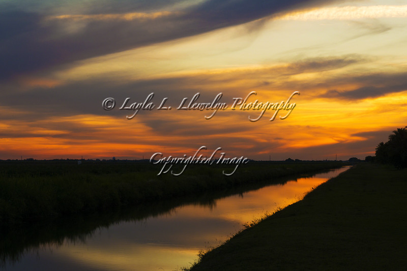 Day 81 Spectacular South Florida Sunset