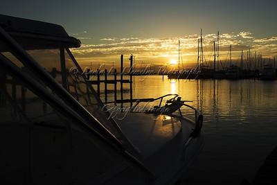 Day 271 Marina Sunrise