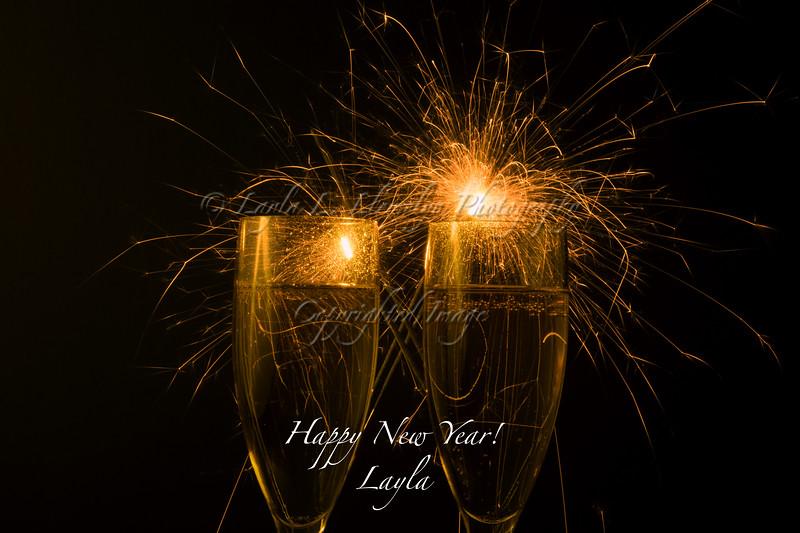 Day 338 Happy New Year!