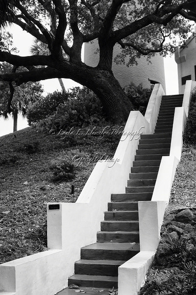 """Day 124 """"The vision must be followed by the venture. It is not enough to stare up the steps - we must step up the stairs.""""--Vance Havner"""