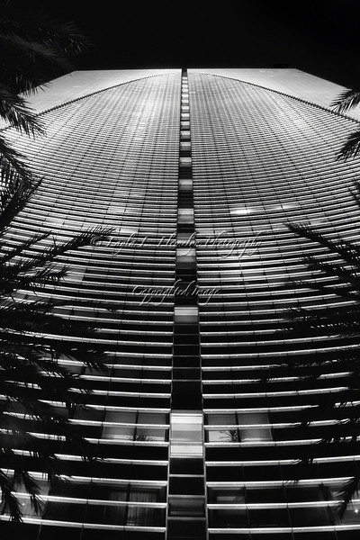 Day 80 Curves and Lines: Miami Architecture--The Conrad